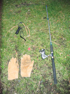 Cqp comments for 2010 for Slingshot fishing pole